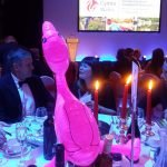 Feebee Flamingo at National Tourism Awards for Wales 2015